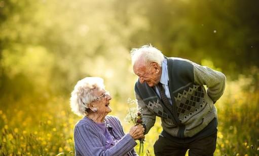 התעללות בקשישים